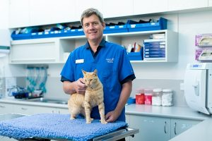 Our Team Hobart Animal Hospital